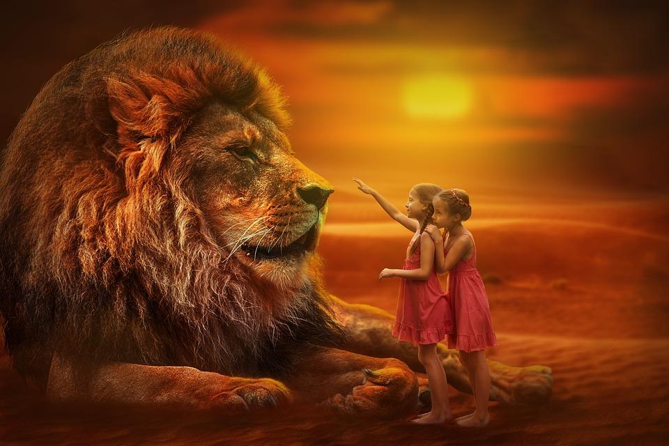ライオン 人 双子 日没 自然 野生動物 女の子 休日 大きな猫 夏 ツイストパーマ