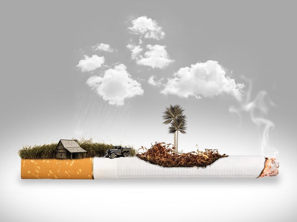 タバコ 除去 プランテーション たばこ 煙 禁煙 禁煙条例 中毒 非常に習慣性 ニコチン