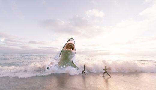 サメって倒せたのか!サメの倒し方・撃退方法【海水浴場にも出る!】