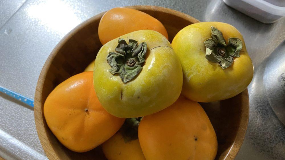 20201008の柿