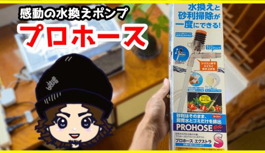 【熱帯魚】プロホースSサイズを小型水槽で使ってみた→最高でした