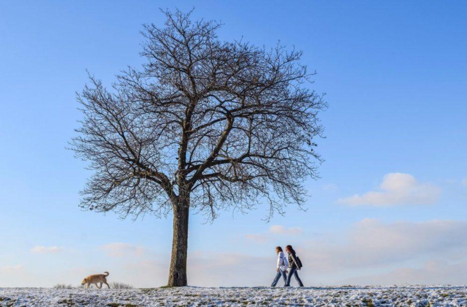 冬の気持ちいい空 キツネ 女性