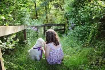 庭にいる少女と犬
