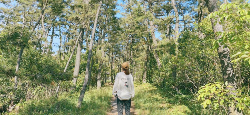 森の中のなお